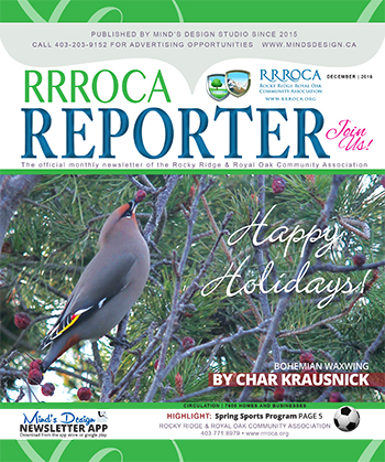 RRROCA Newsletter December 2016